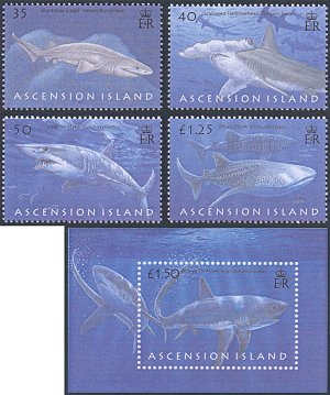 Sharks Ascension Island 2008 stamps