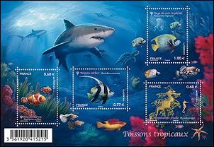 Tropische vissen uit Frankrijk