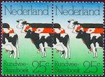 Dubbele koe