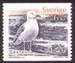 Zweden: Vier vogels en vier jaargetijden
