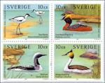 Kust- en zeevogels