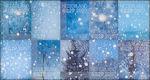 Decemberzegels 2007