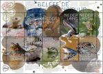 Beleef de natuur met reptielen en amfibieën