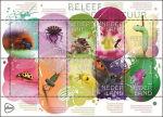 Insecten in Beleef de natuur