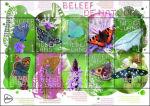 Vlinders in Beleef de Natuur 2019